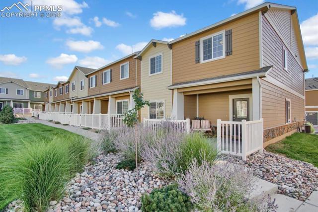 3119 Harpy Grove, Colorado Springs, CO 80916 (#8980004) :: The Treasure Davis Team