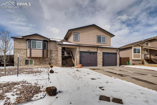 7390 Sue Lane, Colorado Springs, CO 80925 (#8983312) :: Perfect Properties powered by HomeTrackR
