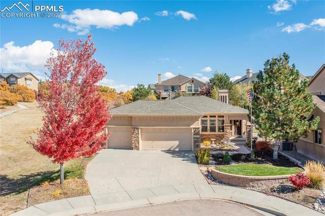 13891 Single Leaf Court, Colorado Springs, CO 80921 (#8984925) :: The Gold Medal Team with RE/MAX Properties, Inc