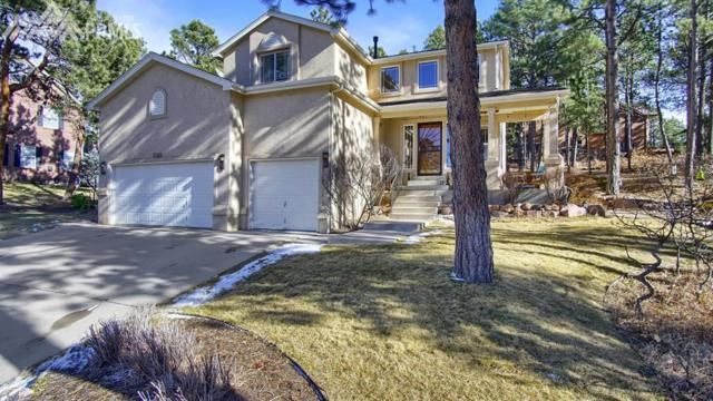 1565 Capadaro Court, Monument, CO 80132 (#8985581) :: The Dunfee Group - Keller Williams Partners Realty
