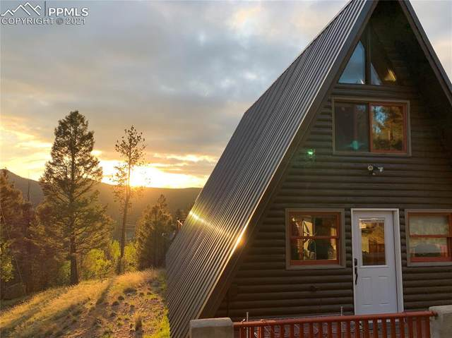 1293 Spring Creek Drive, Divide, CO 80814 (#8989013) :: Tommy Daly Home Team
