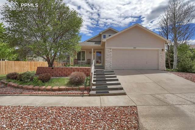 4814 Bridle Pass Drive, Colorado Springs, CO 80923 (#8989691) :: CC Signature Group