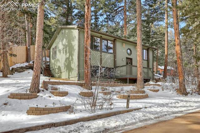 285 Brook Ridge Avenue, Palmer Lake, CO 80133 (#8989737) :: The Dixon Group