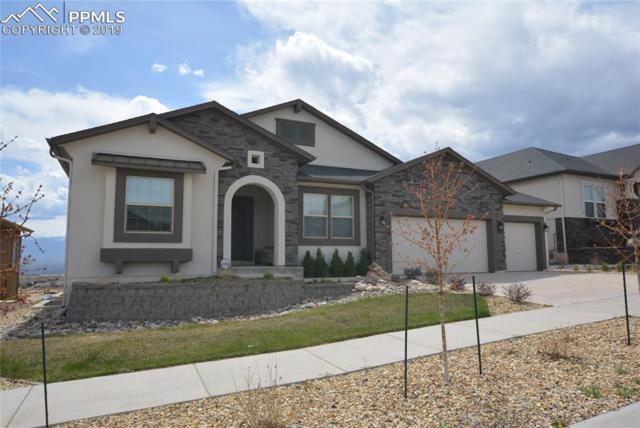 12446 Arrow Creek Court, Colorado Springs, CO 80921 (#8990797) :: CC Signature Group