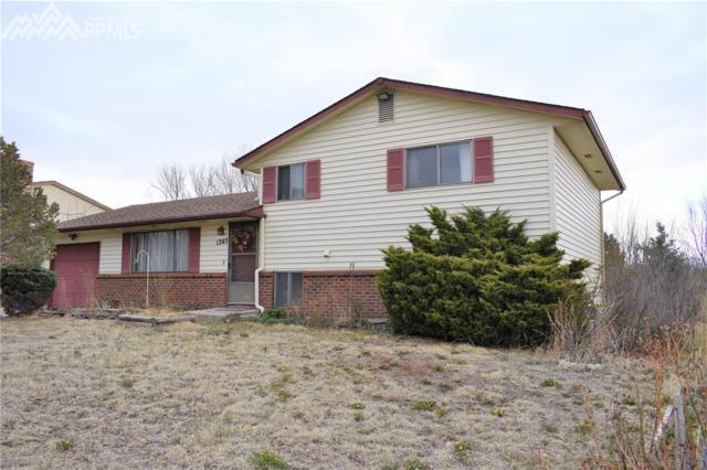 1345 Peterson Road, Colorado Springs, CO 80915 (#8991771) :: 8z Real Estate