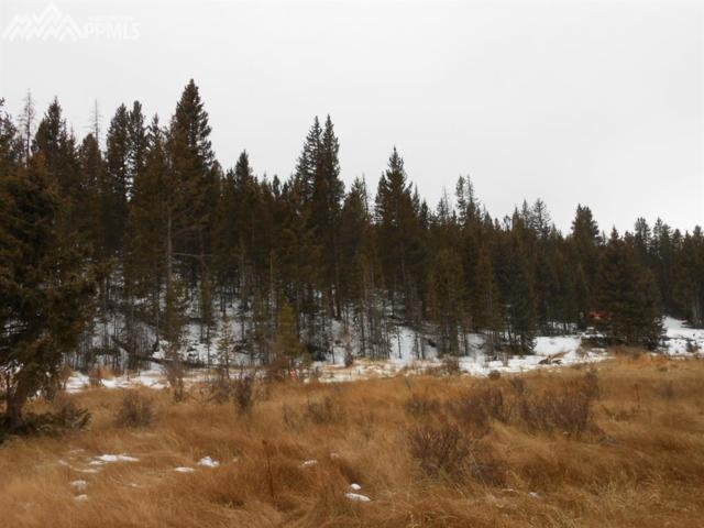 TBD S Highway 67 Highway, Cripple Creek, CO 80813 (#8998303) :: Action Team Realty