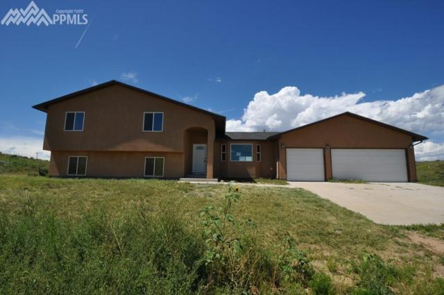 7510 Donner Pass View, Fountain, CO 80817 (#8998460) :: 8z Real Estate