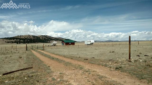 855 Chase Gulch Road, Lake George, CO 80827 (#9001540) :: Colorado Home Finder Realty