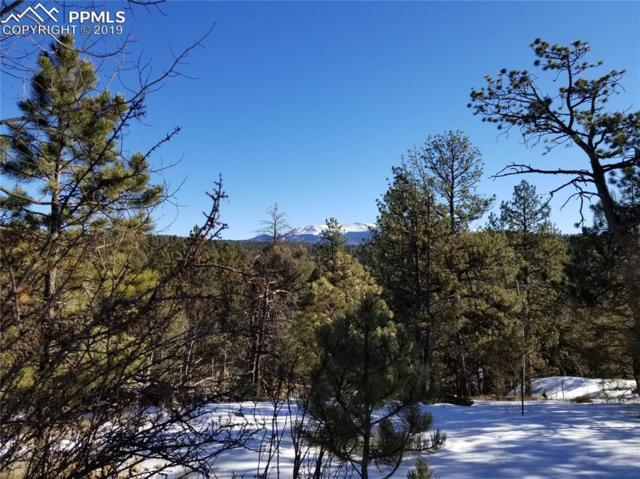 1006 Pinewood Road, Florissant, CO 80816 (#9002217) :: Harling Real Estate