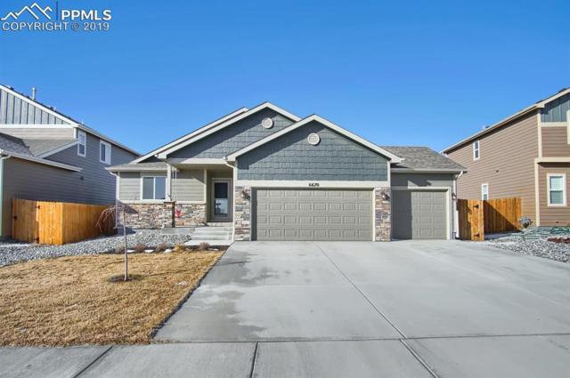 6670 Phantom Way, Colorado Springs, CO 80925 (#9003814) :: 8z Real Estate