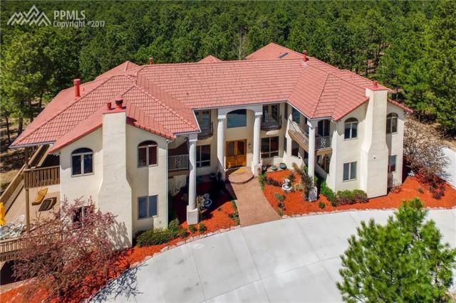 1110 Cambrook Court, Monument, CO 80132 (#9003947) :: 8z Real Estate