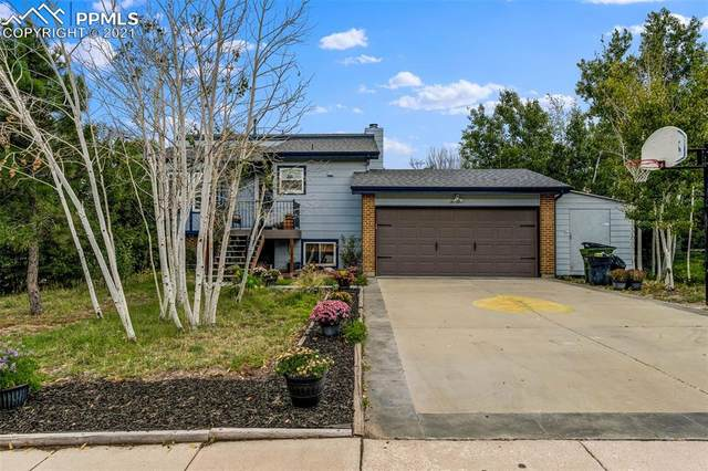 6450 Lange Drive, Colorado Springs, CO 80918 (#9004325) :: Tommy Daly Home Team