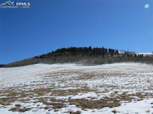 TBD Coochee Trail, Hartsel, CO 80449 (#9005314) :: CC Signature Group