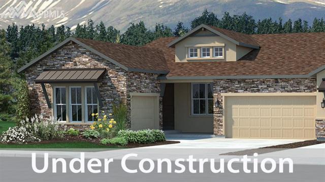 2037 Ruffino Drive, Colorado Springs, CO 80921 (#9006290) :: The Hunstiger Team