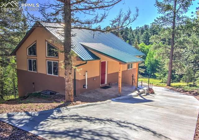 182 Junction Way, Florissant, CO 80816 (#9007436) :: Fisk Team, RE/MAX Properties, Inc.