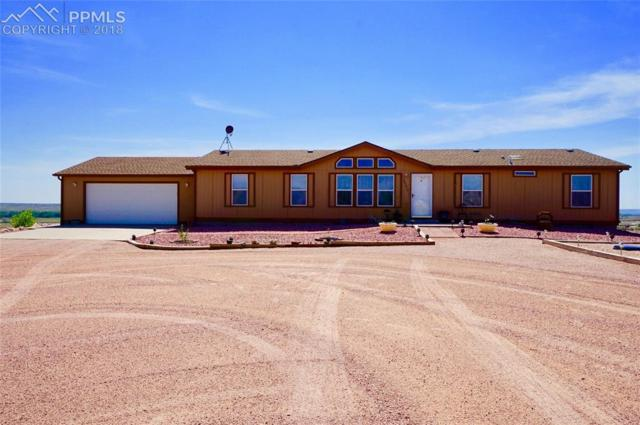 20670 Via Duran Point, Fountain, CO 80817 (#9009490) :: Jason Daniels & Associates at RE/MAX Millennium