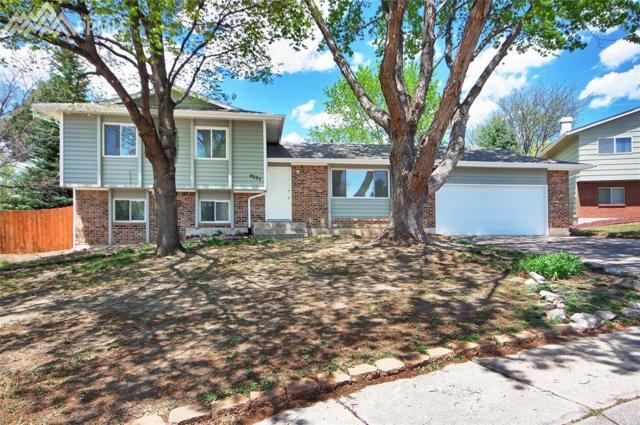 4925 Del Sol Road, Colorado Springs, CO 80918 (#9016670) :: Jason Daniels & Associates at RE/MAX Millennium