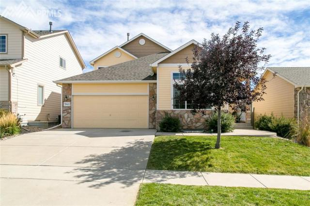 7943 Superior Hill Place, Colorado Springs, CO 80908 (#9017836) :: 8z Real Estate