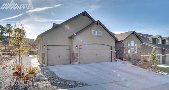 16089 Penn Central Way, Monument, CO 80132 (#9019079) :: Jason Daniels & Associates at RE/MAX Millennium