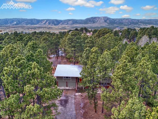 665 Hidden Marsh Road, Monument, CO 80132 (#9024356) :: The Dunfee Group - Keller Williams Partners Realty
