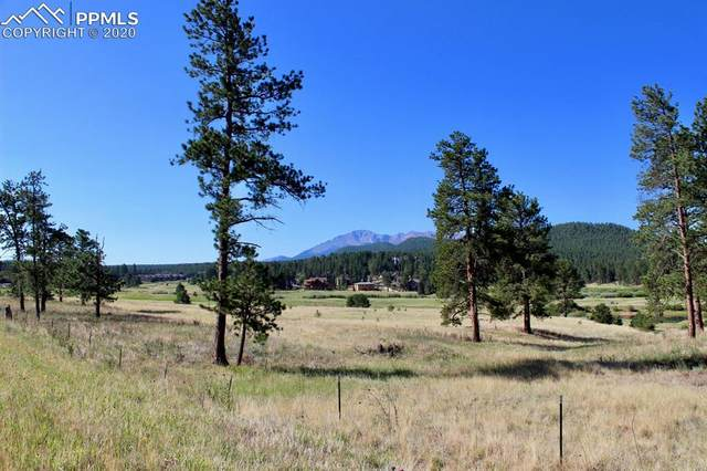 TBD Lucky Lady Drive, Woodland Park, CO 80863 (#9024975) :: Finch & Gable Real Estate Co.