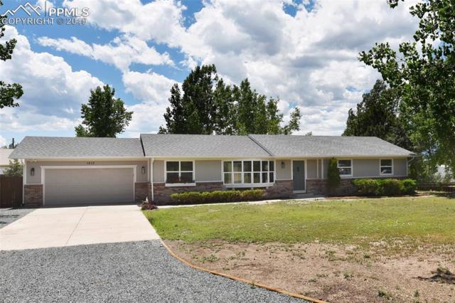 1517 Turner Road, Colorado Springs, CO 80920 (#9030775) :: 8z Real Estate