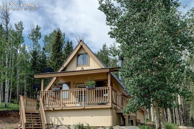 2020 Anges Drive, Cripple Creek, CO 80813 (#9032086) :: CC Signature Group