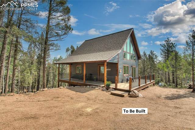 1444 Calcite Drive, Divide, CO 80814 (#9032130) :: Tommy Daly Home Team