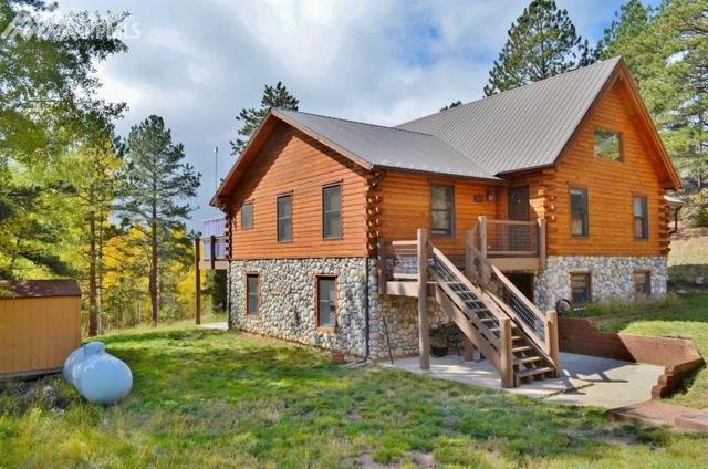4571 W Highway 24, Florissant, CO 80816 (#9034010) :: 8z Real Estate