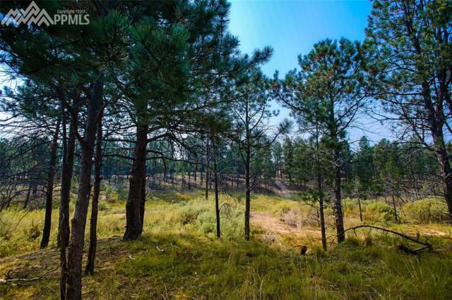 12710 Sylvan Meadows Drive, Colorado Springs, CO 80908 (#9035206) :: 8z Real Estate