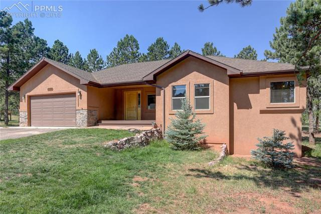 1198 Ptarmigan Drive, Woodland Park, CO 80863 (#9037348) :: The Dunfee Group - Keller Williams Partners Realty