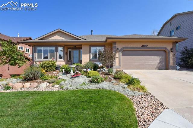 1360 Almagre Peak Drive, Colorado Springs, CO 80921 (#9045097) :: Tommy Daly Home Team