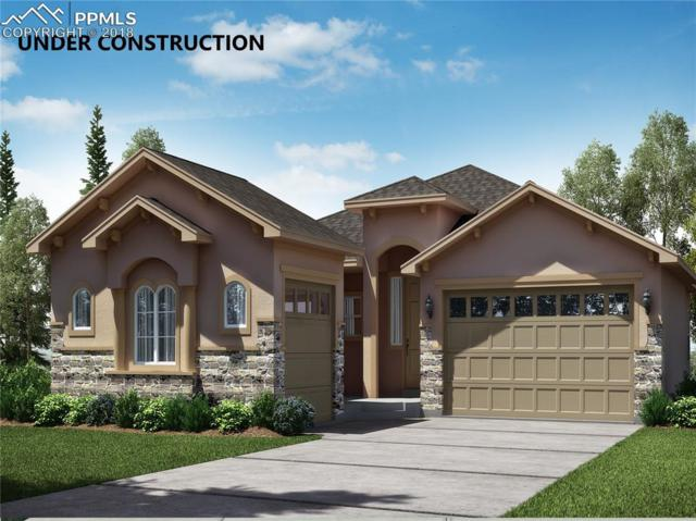 9725 Surrey Run Drive, Colorado Springs, CO 80924 (#9046380) :: Venterra Real Estate LLC