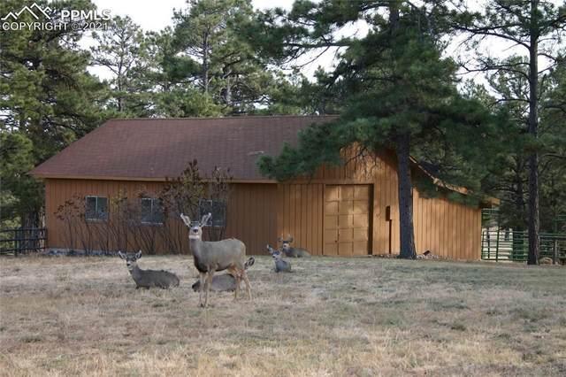 13095 Hawkeye Road, Kiowa, CO 80117 (#9047410) :: Springs Home Team @ Keller Williams Partners
