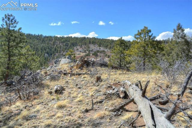 615 Skyview Road, Canon City, CO 81212 (#9051890) :: Perfect Properties powered by HomeTrackR