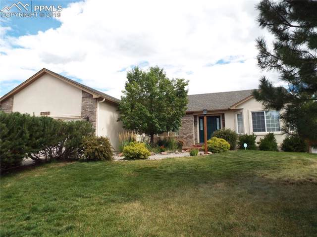 17067 Pawnee Valley Trail, Monument, CO 80132 (#9053679) :: Action Team Realty