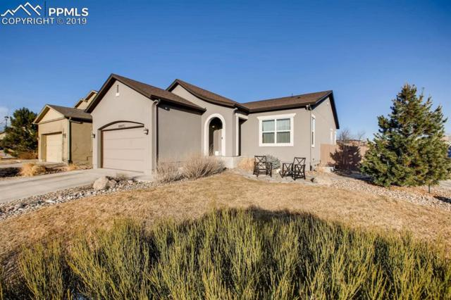 9907 Paonia Park Place, Colorado Springs, CO 80924 (#9058147) :: The Hunstiger Team