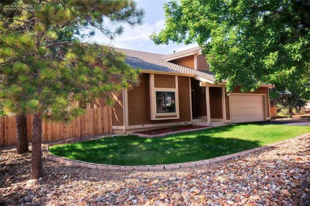 14120 Westchester Drive, Colorado Springs, CO 80921 (#9058283) :: RE/MAX Advantage