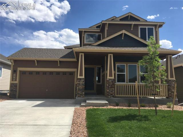 1745 Sandy Shore Lane, Monument, CO 80132 (#9061884) :: Jason Daniels & Associates at RE/MAX Millennium