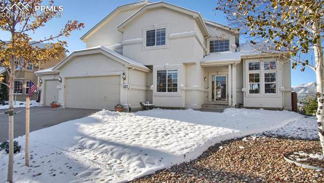 317 Mountain Lover Terrace, Colorado Springs, CO 80921 (#9062080) :: The Kibler Group