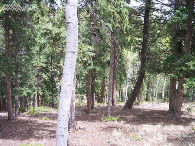 145 Trappers Lake Circle, Divide, CO 80814 (#9064296) :: 8z Real Estate