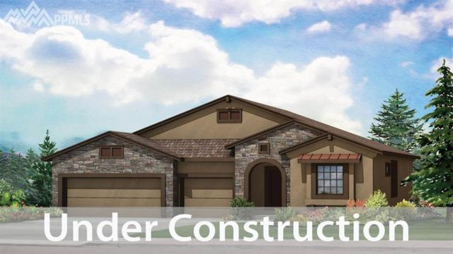 15695 Blue Pearl Court, Monument, CO 80132 (#9064867) :: Action Team Realty
