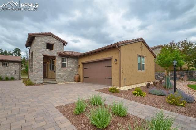 1825 La Bellezza Grove, Colorado Springs, CO 80919 (#9066278) :: 8z Real Estate