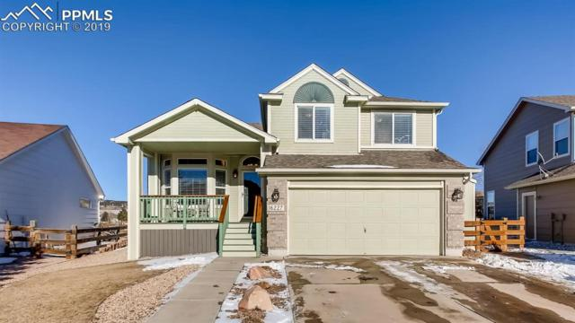 16227 Windy Creek Drive, Monument, CO 80132 (#9069268) :: The Dunfee Group - powered by eXp Realty