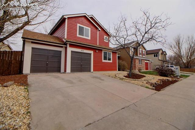 623 Blackmore Place, Fountain, CO 80817 (#9069843) :: Venterra Real Estate LLC