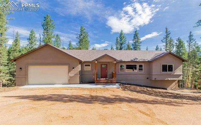 315 Aspen Circle, Divide, CO 80814 (#9074781) :: HomeSmart Realty Group