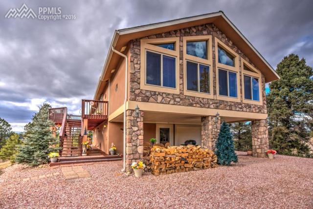 547 Obsidian Drive, Florissant, CO 80816 (#9076565) :: 8z Real Estate