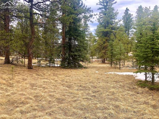 275 S Mountain Estates Road, Florissant, CO 80816 (#9077176) :: Action Team Realty