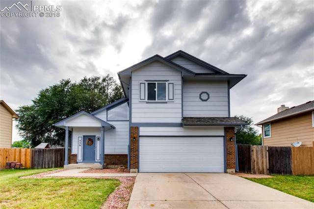 530 Pucket Circle, Colorado Springs, CO 80911 (#9077849) :: 8z Real Estate
