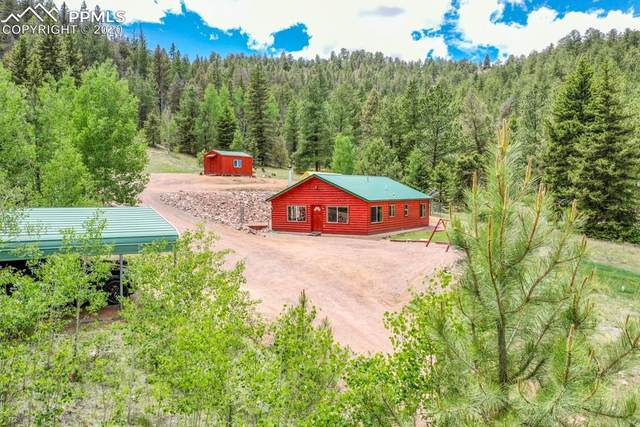 3115-4 Highway 9, Guffey, CO 80820 (#9079105) :: Finch & Gable Real Estate Co.
